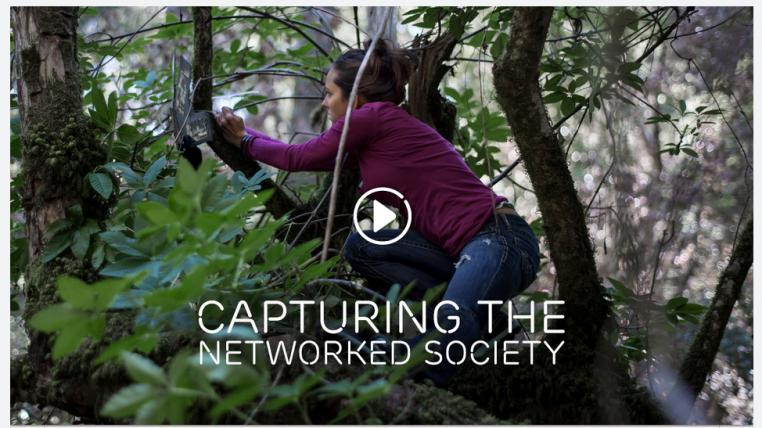 Ericsson Networked Society