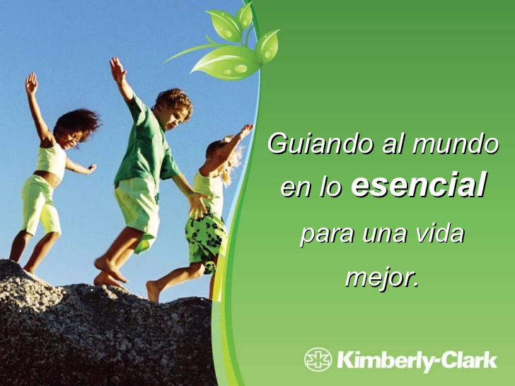 Kimberly-Clark Ambiente Dos