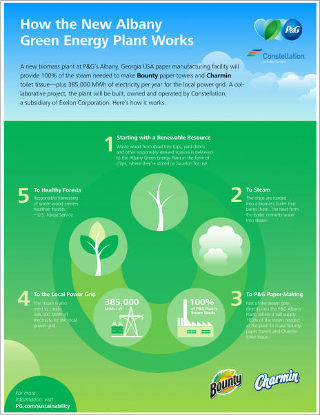 P&G Biomass infographic