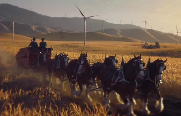 A tale of three sustainability campaigns | Sustainly