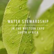 M&S water stewardship
